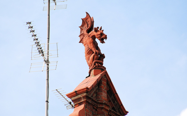 Things on rooftops: dragon