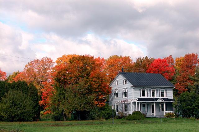 Autumn colours in Quebec, Canada
