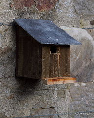 Single bedroom property to let, original Ballachulish slate roof: only attractive birds need apply...