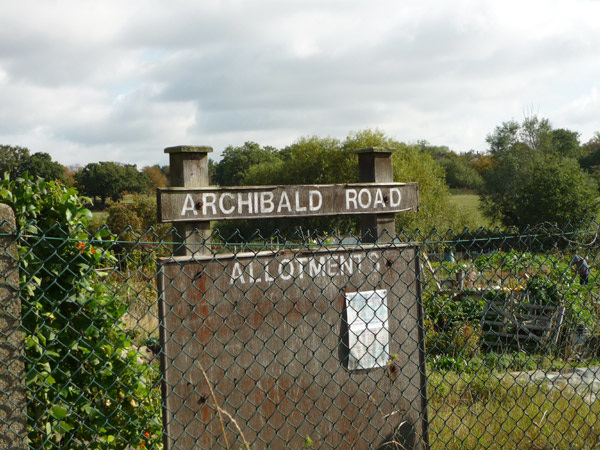 Archibald Road Allotments
