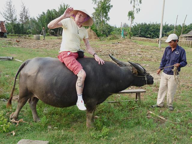 Ride 'im, Cowboy!