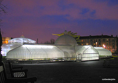 Kibble Palace Glasgow Botanic Gardens at night