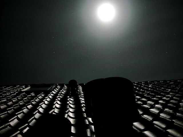 Moon over Bloemendaal