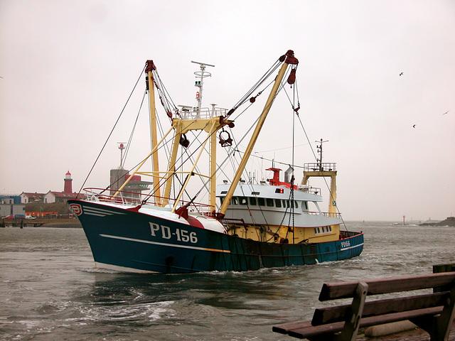 Anglo-Dutch fishing ship Fellow Ship PD-156 entering IJmuiden harbour