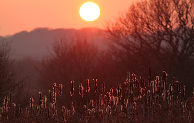 I Miss the Sun!!