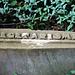 Kleverlaan Cemetery in Haarlem – Vegetarianism