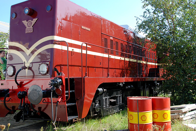 Celebration of the centenary of Haarlem Railway Station: Engine 2225
