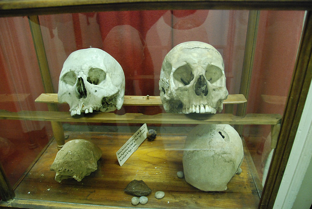 Skulls of some of the soldiers at Waterloo