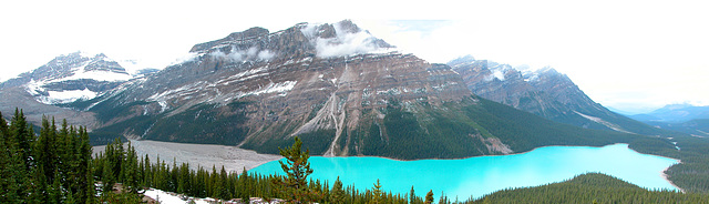 Peyto Lake in the Canadian Rocky Mountains