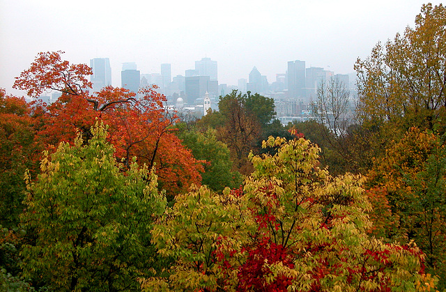 View of Montreal from Sainte-Hélène Island on a rainy day