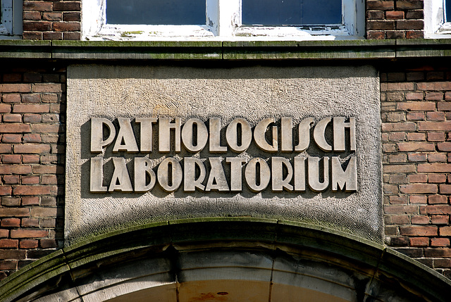 Some shots from around the new office: Lettering on the former Pathology Lab