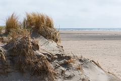 Sand - 20130512