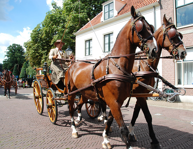 Carriages in Bloemendaal