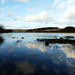 Filsham Reservoir