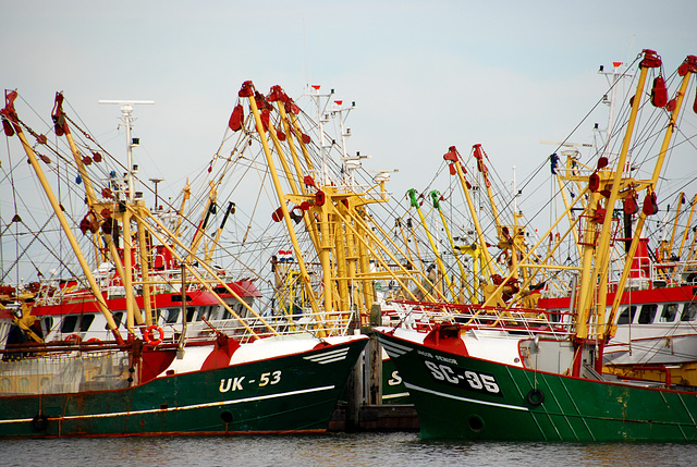 The harbour of Lauwersoog: Fishing ships
