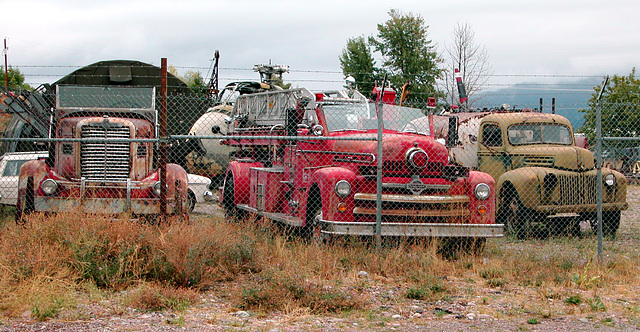The Miracle of America Museum (Polson, Montana): old trucks