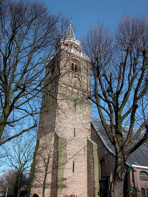 The tower of the former abbey of Rijnsburg