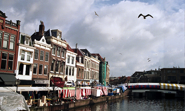 Canals in Leiden: The Nieuwe Rijn (The New Rhine)