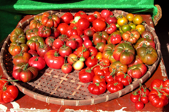 Portland images: tomatoes at the farmer's market