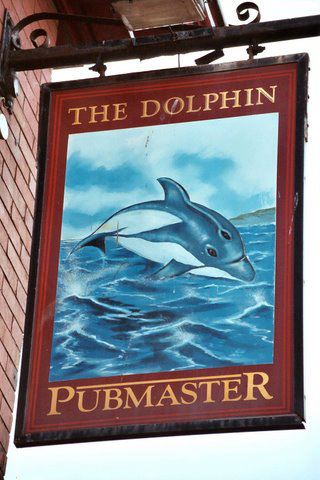 'The Dolphin'