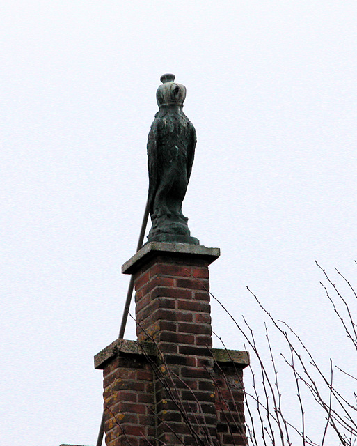 Things on Rooftops: nr. 15 The Falcon