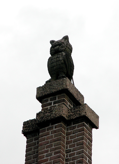 Things on Rooftops: nr. 16 The Owl