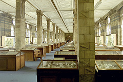 Natural History Museum: one of the old galleries