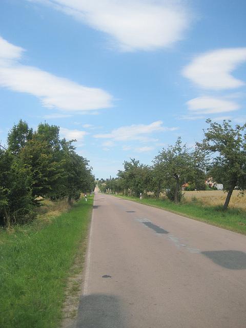 Straße nach Alsleben