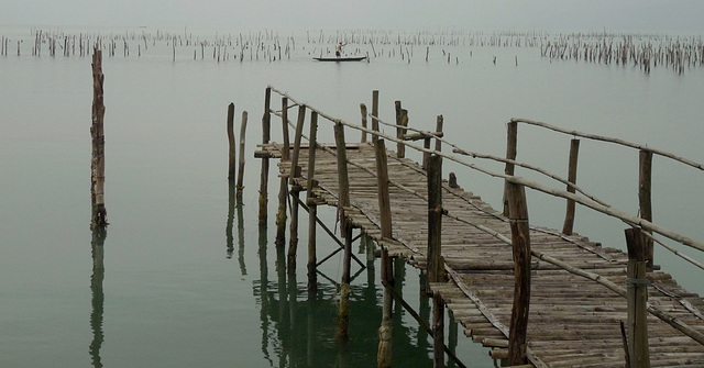 Jetty and Mussel Beds