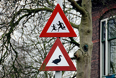 The old running-children traffic sign coupled with a warning sign for geese