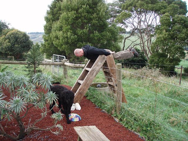 farmyard planking
