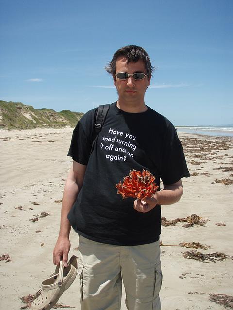 orange seaweed