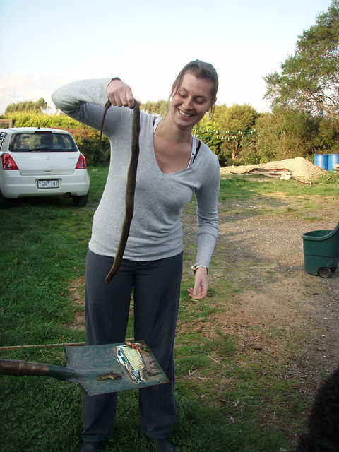 Emilie & the tiger snake