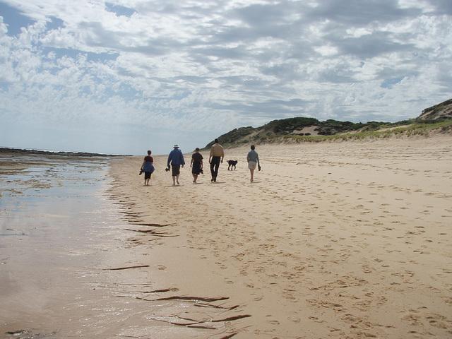 afternoon walk along the beach