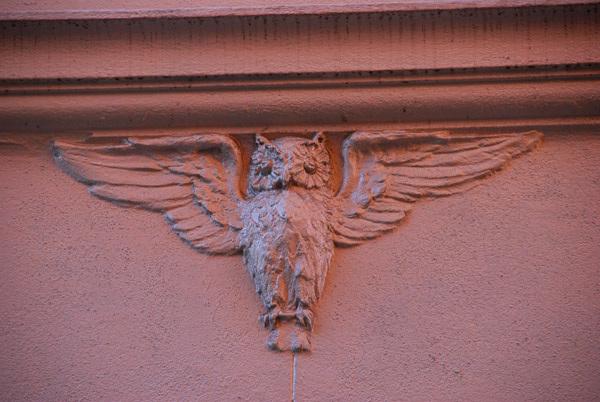 Owl, Binney St