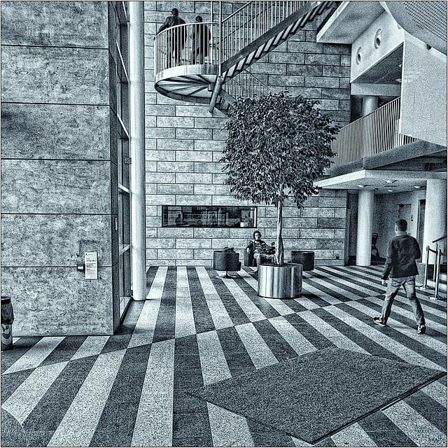 City hall activities