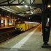 Train 526 & 905 at Haarlem Station