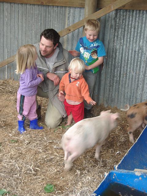 Daniel & kids & piglets