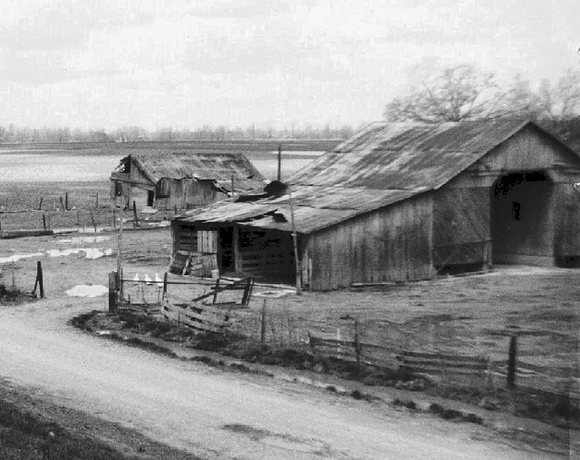 Old Corn Crib and Hog Shed