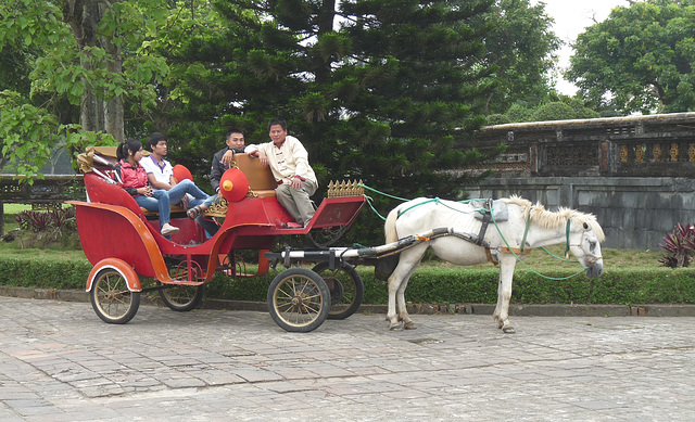Tourist Transport
