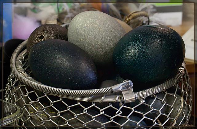 Basket of Emu Eggs