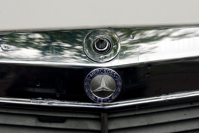 The star of my Mercedes didn't survive the Leiden's Relief celebrations