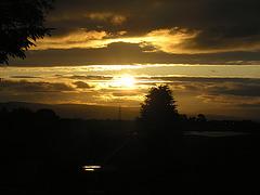 Scottish Solstice Sunshine