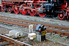 Celebration of the centenary of Haarlem Railway Station: Engine 65 018 and a dwarf signal