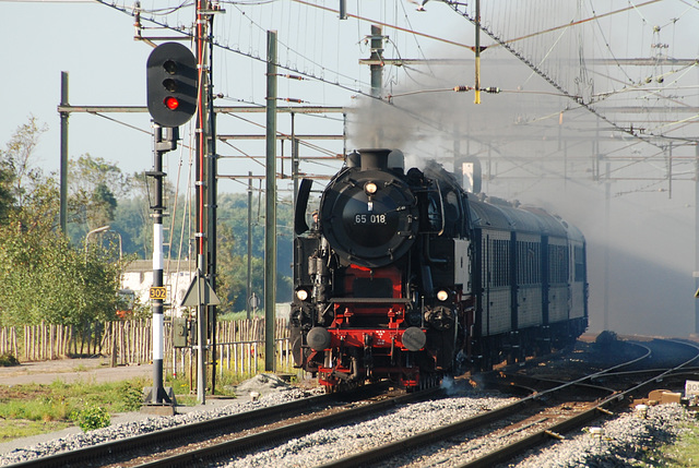 Celebration of the centenary of Haarlem Railway Station: Engine 65 018 of the SSN passing at Lisse
