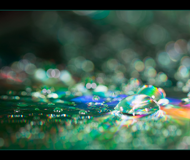 Dreamy Green Droplets