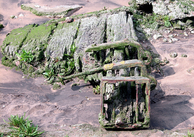 Piece of wood along the bank of the Thames