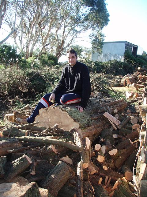 Ad & the big log
