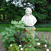 A visit to the Botanical Garden of Leiden University: bust of Linnæus