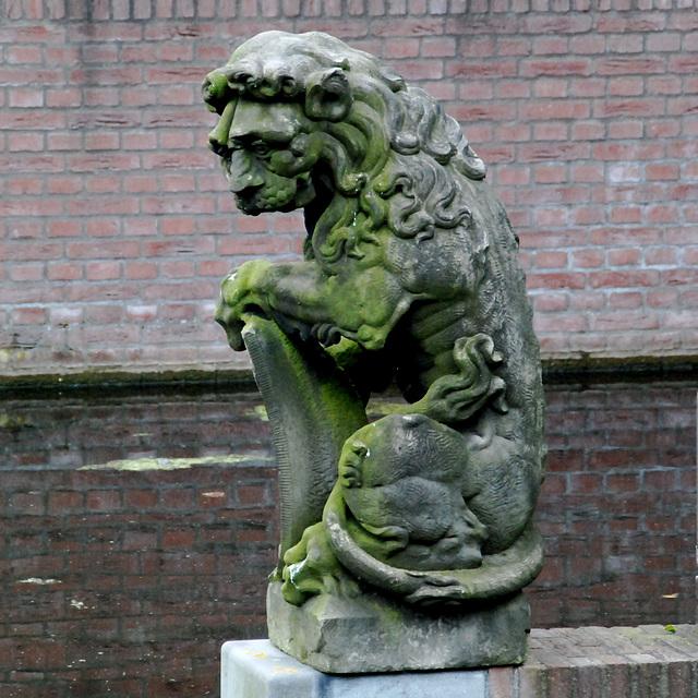A visit to the Botanical Garden of Leiden University